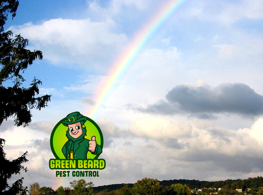$10 initial service from Greenbeard Pest Control